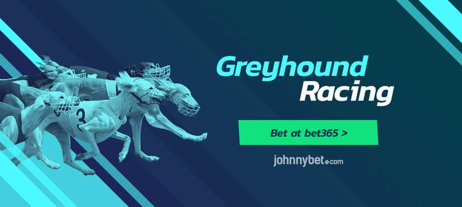 Free Greyhounds Betting Tips - Strategy - Odds - Today & Tomorrow