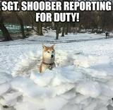 Reporting for duty memes