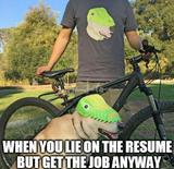 When you lie on the resume memes