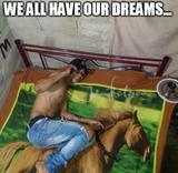 We all have our dreams memes