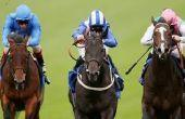 Horse racing online betting at William Hill