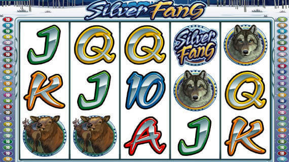Panther Moon™ Slot Machine Game to Play Free in Novomatics Online Casinos